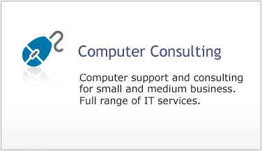 Computer Consulting